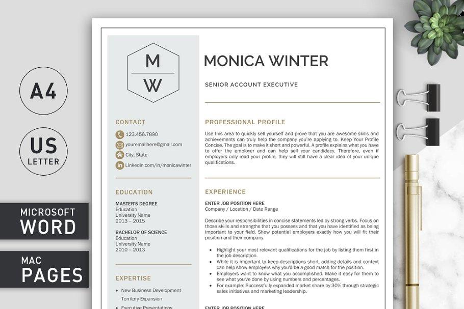 Resume Template | CV Template ~ Resume Templates ~ Creative