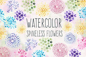 Watercolor Spineless Flowers
