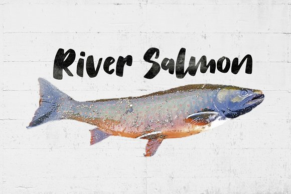 Salmon Brush Font in Sans-Serif Fonts - product preview 2