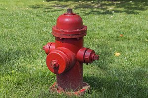 Red fire hydrant on a lawn.