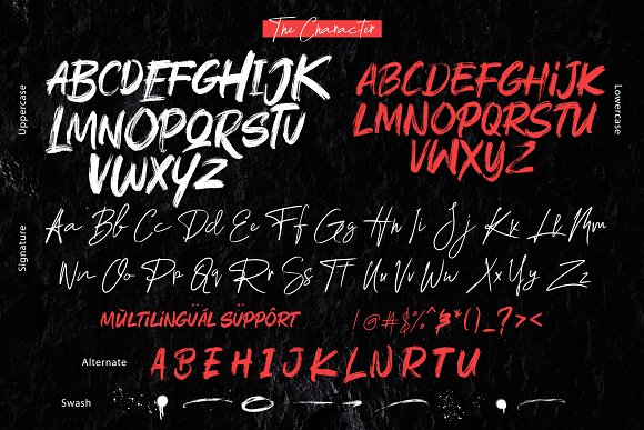 Rushink Font Duo   Brush & Signature in Blackletter Fonts - product preview 5
