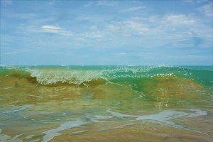 Breaking Waves Near the Shore