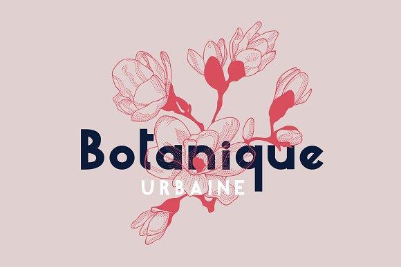 Mille Fleur | Sans Serif Font Duo in Sans-Serif Fonts - product preview 1