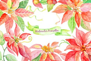 Watercolor Clip Art Red Poinsettia