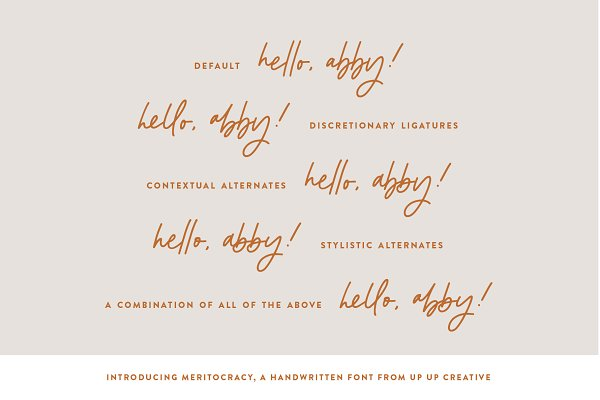 Meritocracy, A Handwritten Script