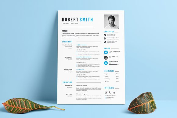 Professional Resume / CV Template in Letter Templates - product preview 1