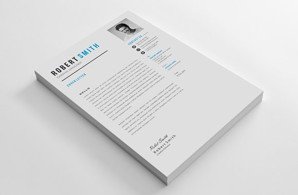 Professional Resume / CV Template in Letter Templates - product preview 5