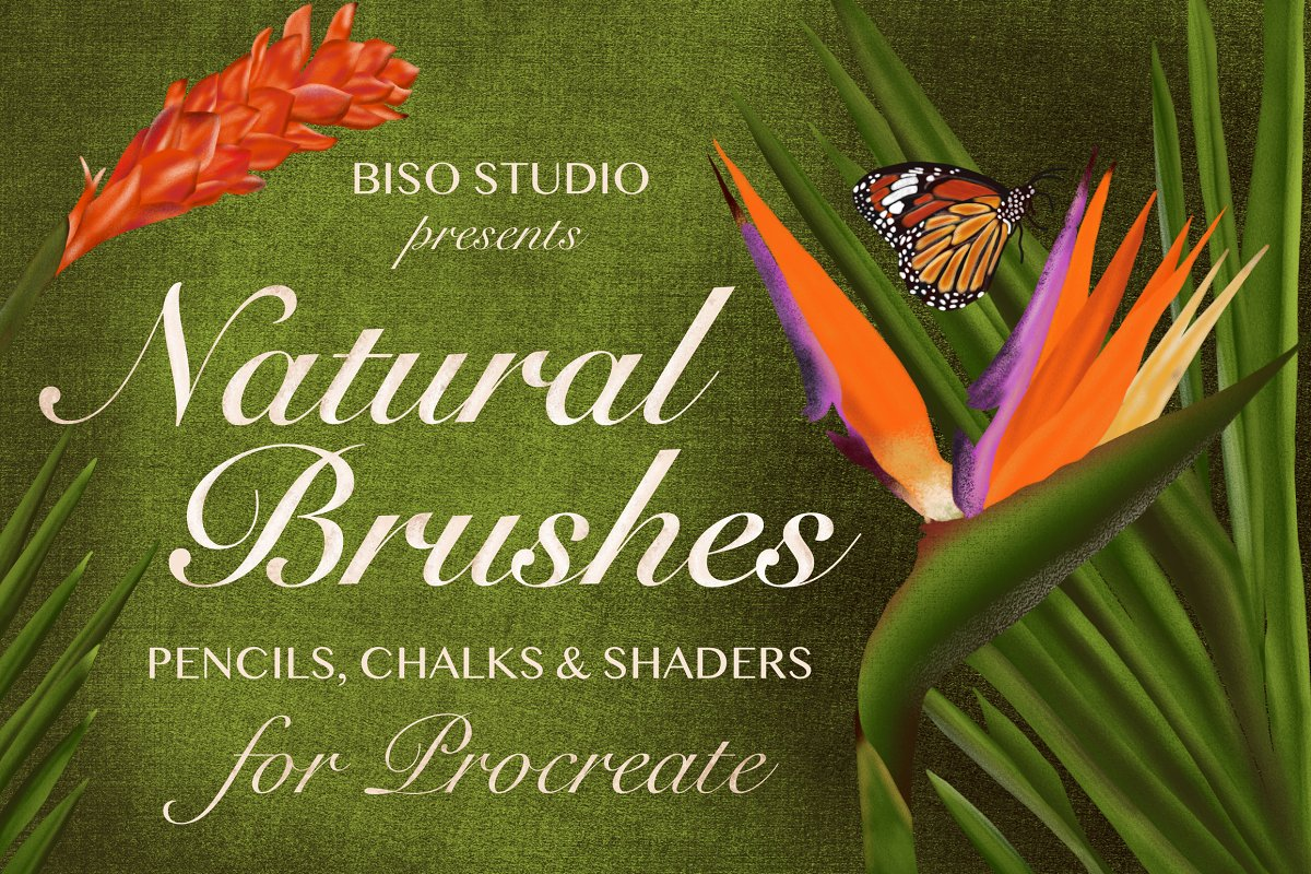 Natural Brushes for Procreate