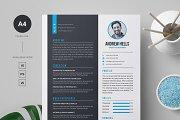 Resume / CV Template