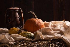 pumpkins in a barn