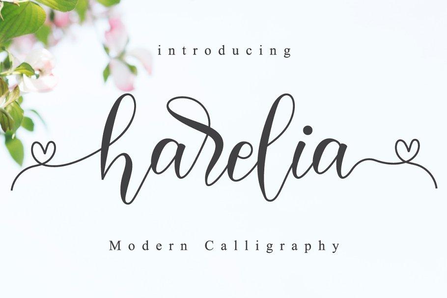 Harelia // Lovely Script Font