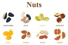 Set of eight different types nuts