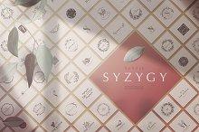 SYZYGY Bundle 90 Logos by  in Logos