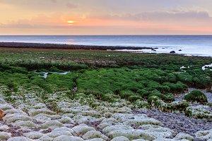 Etretat beach at low tide