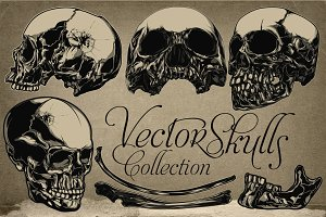 Vector Skulls Collection