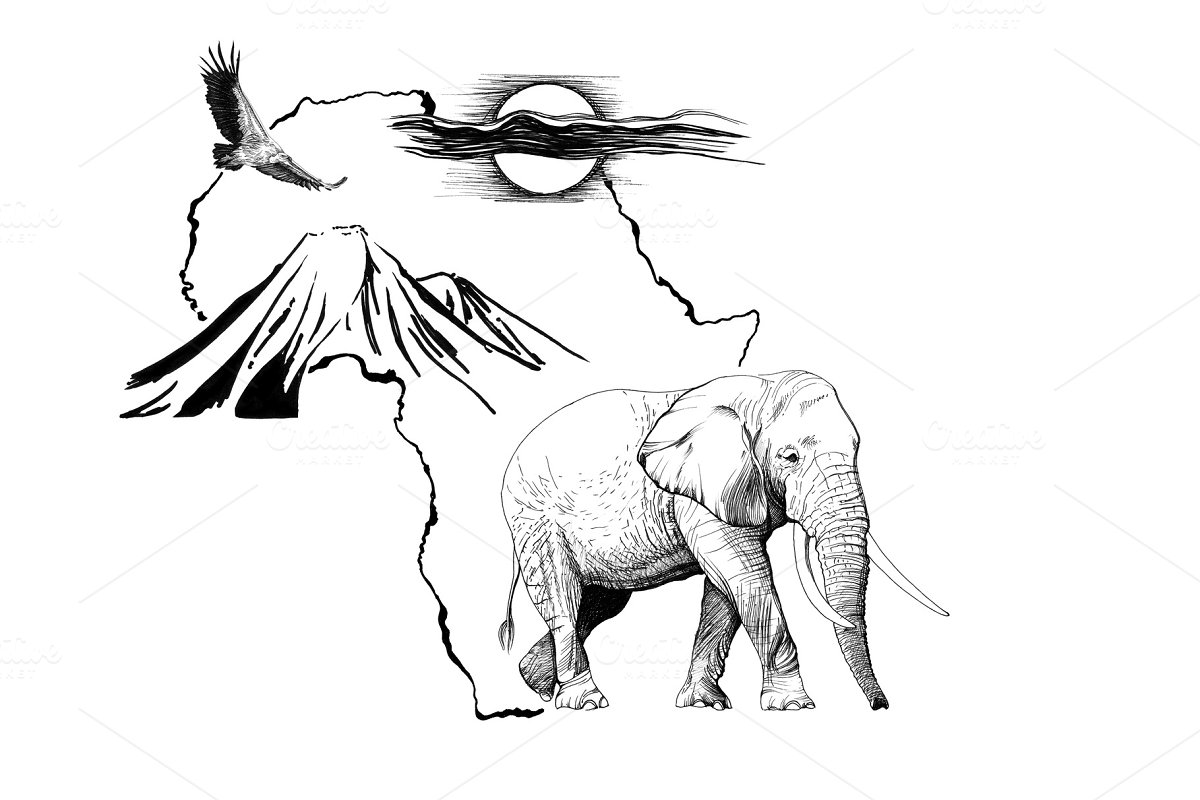 Elephant on Africa map background wi