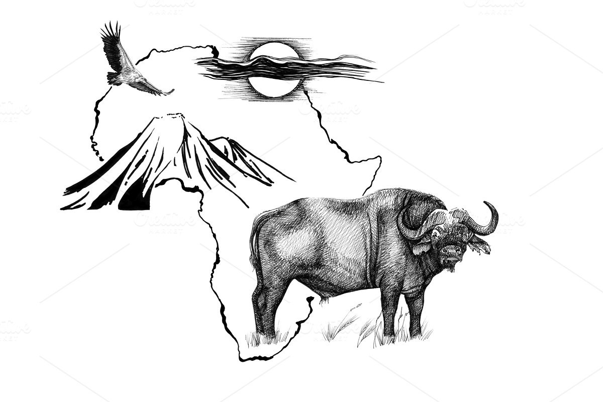 Buffalo on Africa map background wit