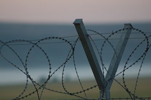 Barbed wire II