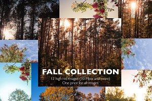 Fall Collection, 12 nature photos