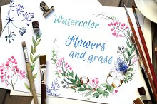 Flowers and grass. Watercolor