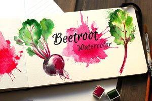 Beetroot. Watercolor sketch food