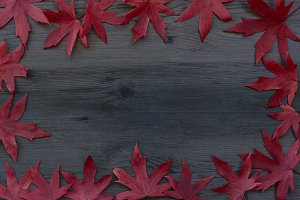 Autumn leaves wooden background
