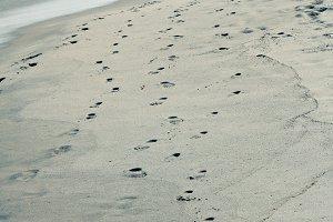 Footprints at the Shoreline