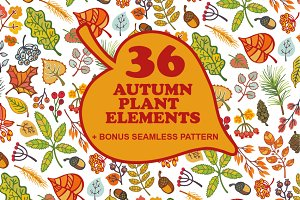 Autumn leaves,plant elements