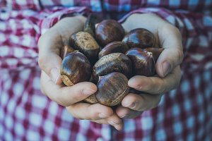 Woman Holding chestnuts
