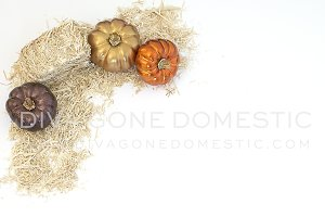 Styled Photo - Pumpkin and Hay