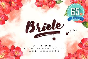 Briele Font Pack (3 fonts) + Swashes
