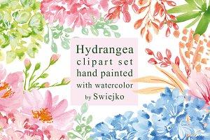 Hydrangea clipart set