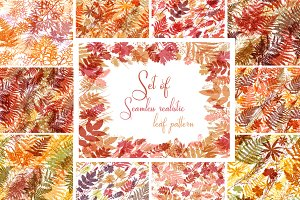 Set of 10 seamless leaves pattern