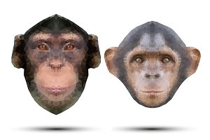 Monkey portraits in triangular style