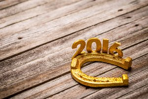 Text 2016 with golden horseshoe
