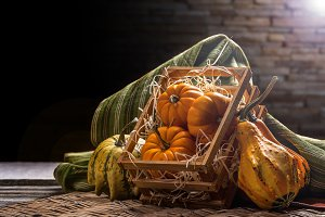 Pumpkins in crate