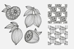 Hand Drawn Lemons and Patterns