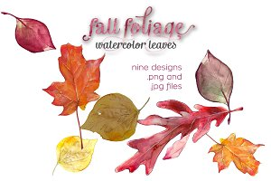 Fall Foliage Watercolor Leaves