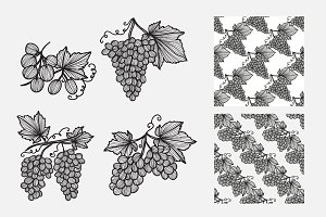Hand Drawn Grapes and Patterns