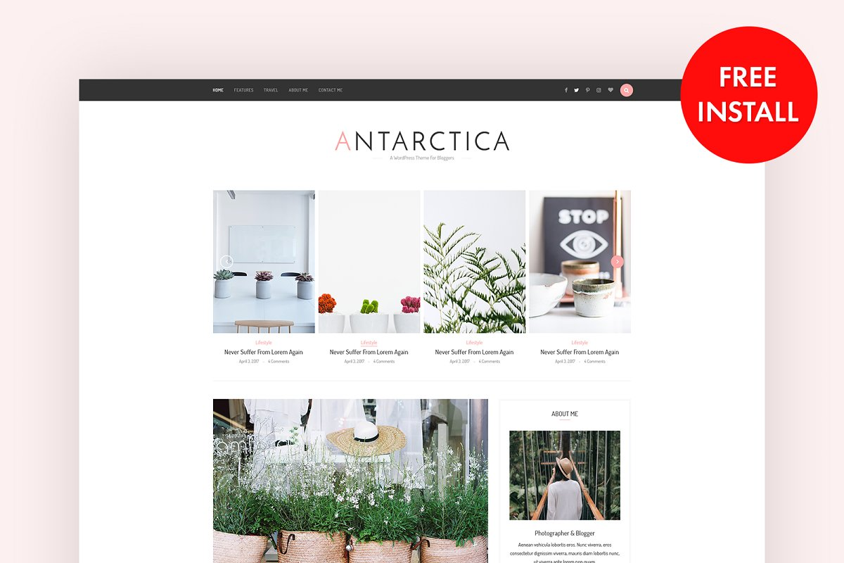 Antarctica - WordPress Blog Theme