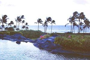 Kauai Beach & Pond I