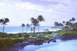 Kauai Beach & Pond II