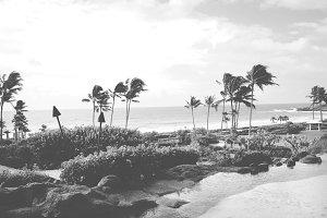 Kauai Beach & Pond III