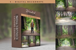 Wooded Roads - Digital Backdrops