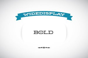 WideDisplay Bold