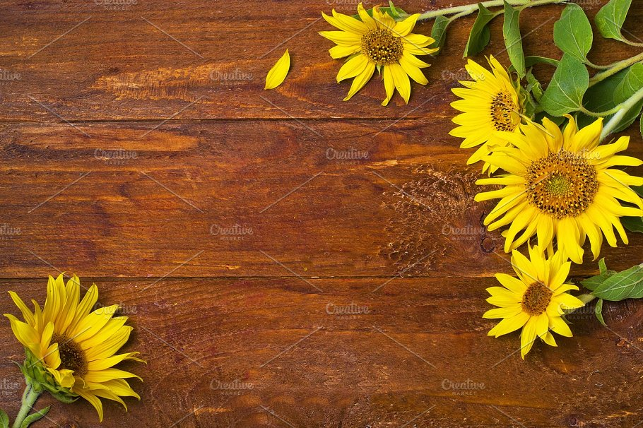 Sunflower On A Wooden Background Food Images Creative Market
