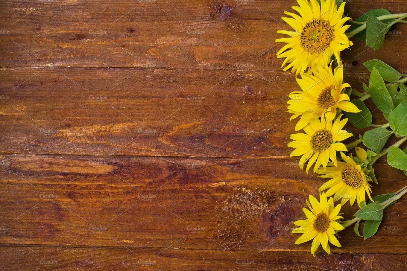 Sunflower Wooden Background Food Images Creative Market