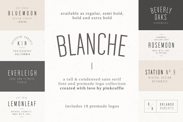 Blanche | Fonts & Premade Logo Pack