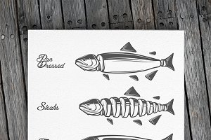 Salmon fish cuts diagram
