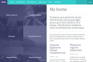 Exin WordPress theme
